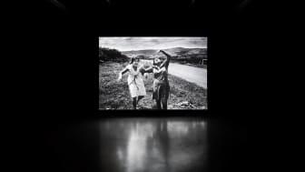 Alfredo Jaar, Shadows, 2014 (Mixed media installation)