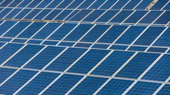 Flere solceller på kommunale bygninger
