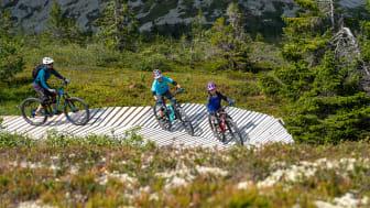 Stisykling er hovedgrunnen til at mange familier velger Trysil om sommeren. Foto: Jonas Sjögren/Trysil