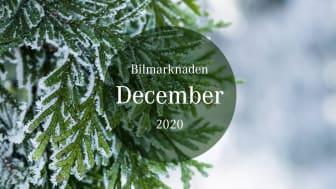 Bilmarknaden december 2020