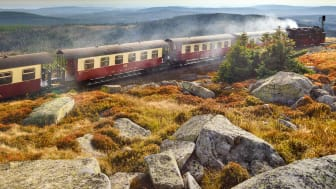 Harz: Historic narrow-gauge train with steam engine in the National Park Brocken
