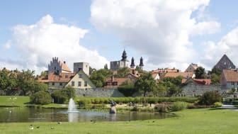 Gröna Bilister kommer hålla tre seminarier i Almedalen. Sal B22 på Campus Gotland, Cramérgatan 3. Välkommen!