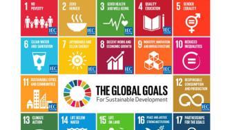 Standarder för Agenda 2030