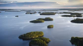 Wild Food: Symposium Feines Essen + Trinken begrüßt 2020 das Gastland Finnland