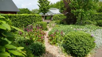 I Alnarps rehabträdgård forskas på naturens effekter på hälsa och välbefinnande. Foto: Marianne Persson
