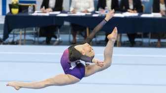 Grenfinalerna avgjorda på SM i artistisk gymnastik