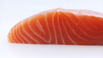 Norwegian salmon tops most sustainable protein production ranking