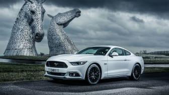 Mustang Scotland