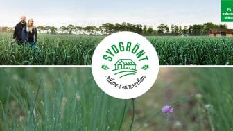 Vi på SydGrönt lever av naturen, därför är det en självklarthet att arbeta hållbart.
