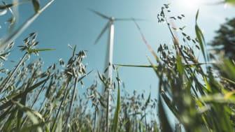 Kommuninvest planerar för att emittera ny grön obligation