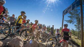 Det er blitt syklet over 100.000 runder på Trysils bygde sykkelstier så langt i sommer. Foto: Fredrik Otterstad
