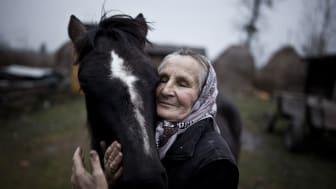 Sony World Photography Awards: specjalny konkurs dla fotografów z Polski
