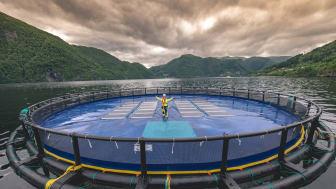 Sonnenenergie direkt aus dem Meer: Norwegen auf der Intersolar 2019