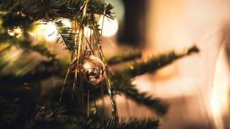 Fira en säker jul och nyår hos oss på Salt & Sill