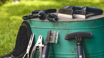 Bürsten-Sortiment zur Fellpflege von Fressnapf
