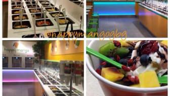 Ny kedja etablerar sin första butik i Nordstan idag - Happy Mango Frozen Yogurt & Ice Cream Bar