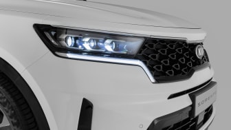 Front grille with headlights