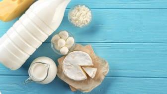 Milchprodukte erzeugen hohe Mengen Abwasser