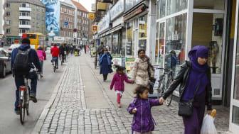 Integration : Vad kan vi lära av Tyskland?