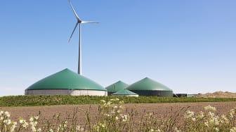 Im Rahmen des Modellprojekts soll beispielhaft die gesamte Bio-LNG-Wertschöpfungskette umgesetzt werden, um so einen Beitrag zum Aufbau einer entsprechenden Infrastruktur zu leisten. (Bild: AdobeStock/eyewave)