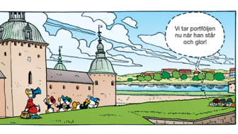 "Serieruta ur ""Skattjakt i Småland"""