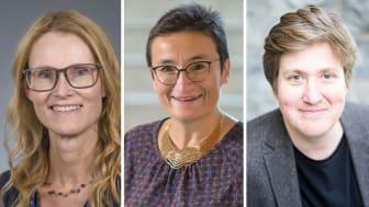 WASP-HS referensmöte Helena Lindgren, Virginia Dignum (båda Umeå universitet) och Francis Lee, Chalmers, är några av talarna på WASP-HS digitala referensmöte. Bild: Montage