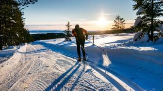 På Orsa Grönklitt kan man nemt kombinere langrend og alpint skiløb, som mange danskere gerne vil. Foto: Orsa Grönklittgruppen