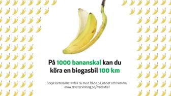 Det sorterade matavfallet behandlas och blir till biogas som vi kan köra bilar och bussar  på.