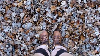 När kylan kryper närmare kan Meindls kängor enkelt bli varmare och mer anpassade för vinterklimat.