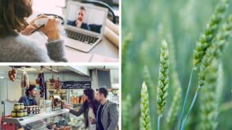 Minskat klimatavtryck och kompetensutveckling för en hållbar livsmedelssektor