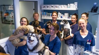 Mosengs Dyreklinikk velger å bli en del av Evidensia. Alle veterinærene og dyrepleierne fortsetter ved klinikken.