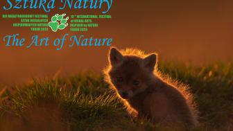 """Sony oficjalnym mecenasem festiwalu fotografii przyrodniczej – """"Sztuka Natury""""!"""