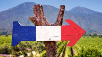 Fira kärleken med en vinresa till Frankrike, på hemmaplan.