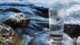 Världsvattendagen 2021 med fokus på vattens värde