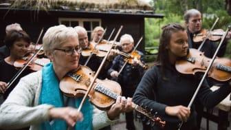 Hilde Bjørkum er aktivt medlem i Indre Sunnfjord Spelemannslag, som kvart år spelar i tunet på Jølstramuseet under festivalen.