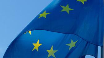 Expertlista – EU-valet