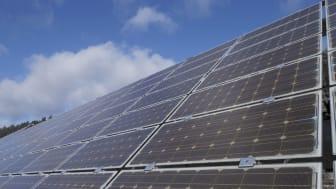Foto: Rekord durch Photovoltaik: Noch nie haben Anlagen mehr Erneuerbare Energie in das Netz der Bayernwerk AG eingespeist als am vergangenen Sonntag.