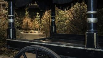 Likvogn og grantrær