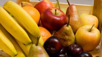 Prøv Frugtposen inden 30. september og få 50% rabat på den første frugtpose!