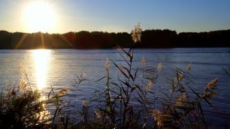 Samlade råd och rekommendationer om mätning och riskbedömning av nya kemikalier i vattenmiljö