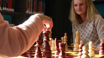 Fult fokus - Silje Bjerke - Sjakk