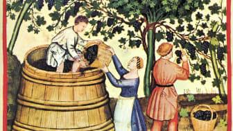 Vinsmaking med middelaldersk vri
