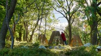 Träkojor i Årstabergsparken