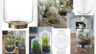 Plantera i glasvaser. Här ser du vaser från EM Home Votive, Shaped och Bubble.
