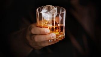 Skål! Gör professionell cocktail-is hemma