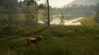 COTW_Bloodhound_PR_HD_4.png