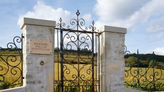 Porte et vigne du Montrachet.jpg