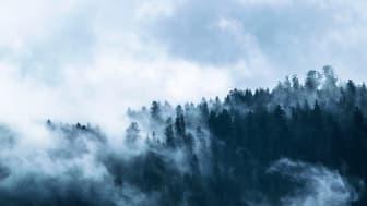 Upptäckt kastar nytt ljus över hur luftföroreningar omvandlas i atmosfären