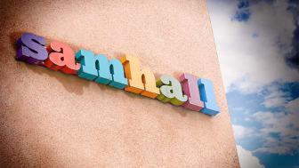 Vems är felet, vem har rätt och vem har fel om Samhall, den ständiga frågan?