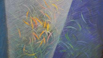 Motiv zum Flyer der Landwirtschaftlichen Tagung 2020 am Goetheanum (Bild: Jean-Paul Ingrand, Frankreich)
